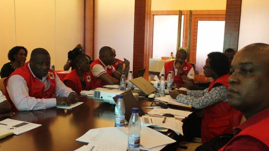 Cruz Vermelha de Moçambique reúne-se em Sessão do Conselho Executivo Nacional